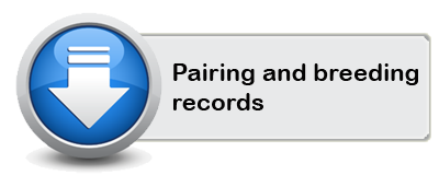 pairingandbreedingrecord