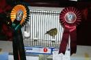 John Mallia 3rd Best Hybrid_1
